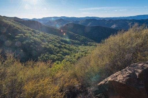 Canyon view. Photo by Scott McCusker.