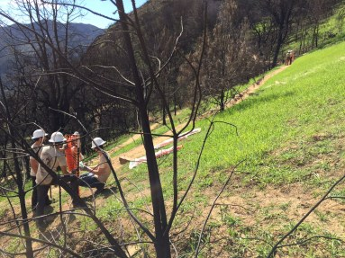 Trail crew at work after Wragg Fire.